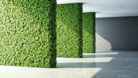 Verticale tuinwanden - interieurinrichting